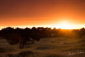 Hoge Veluwe lucht zonsondergang