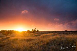 Hoge Veluwe zonsondergang lucht